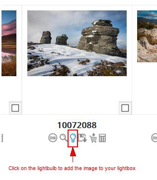 Adding an image to a lightbox from the search results page.