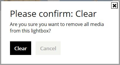 Confirmation remove all media from this lightbox